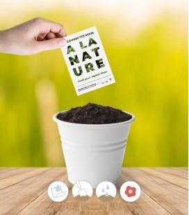 Papier graines Végétol® Phyto à planter : papier ensemencé contenant du basilic, de la ciboulette, du persil et de l'aneth